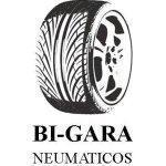 Neumáticos Bi-Gara